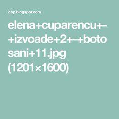 elena+cuparencu+-+izvoade+2+-+botosani+11.jpg (1201×1600)