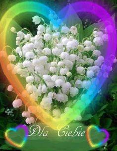 Happy Birthday, Plants, Amor, Roses, Hearts, Happy Brithday, Urari La Multi Ani, Happy Birthday Funny, Plant