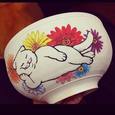 Sleepy cat on the bowl 居眠り猫