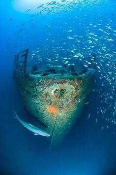 Top 10 Wreck Dives of North Carolina