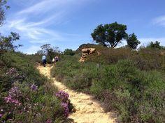 Charmlee Wilderness Park inMalibu - Do Something! Blog - Conejo Valley Guide