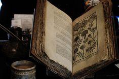 Imagem de book, old, and magic