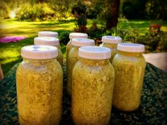 """Homesteading In The Wilderness (And A Sauerkraut Recipe) - Women Who Farm I feel incredibly honored that Marblemount Homestead and I got  featured on """"Women Who Farm"""""""