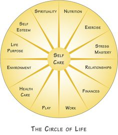 Self care - Another framework for Life Coaching Coaching Personal, Life Coaching Tools, Top Imagem, Circle Of Life, Self Development, Personal Development, Leadership Development, Health Coach, Self Esteem