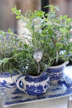 Diy: un jardín interior en miniatura | Decorar tu casa es facilisimo.com