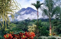 Let Stride help you find your perfect pre-planned trip to beautiful Costa Rica!