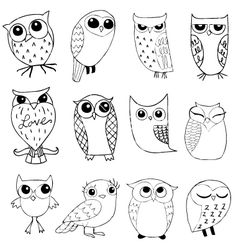 Owlstravaganza vector 95270 - by renreeser on VectorStock®