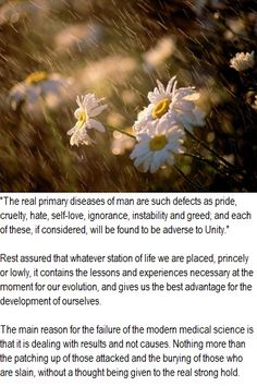The real desease of man.    Dr. Edward Bach quote