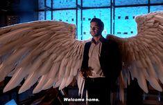 Lucifer Wings, Lucifer Gif, Tom Ellis Lucifer, Lauren German, Short Instagram Quotes, Admin Jokes, Wings Wallpaper, Chloe Decker, Hottest Guy Ever