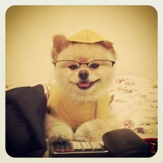 Raincoat, glasses, and a calculator. Too cute!