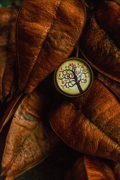 Origin by An Drada on Close Up Photos, Class Ring, The Originals, Rings, Fashion, Moda, Fashion Styles, Ring, Jewelry Rings