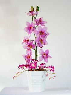Arranjo Flor Flores Artificial Artificiais Orquídea Orquídea