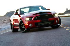 shelby GT500 super snake for 2014 | Image: 2013 Shelby GT500 Super Snake Widebody, size: 1024 x 682, type ...