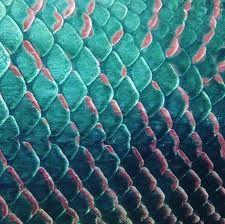Картинки по запросу Women Shiny Fish Scale Bag