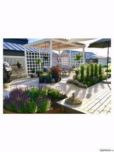 10 Best Pergola Designs, Ideas and Pictures of Pergolas – Top Soop Diy Pergola, Outdoor Pergola, Pergola Shade, Pergola Ideas, Patio Ideas, Farm Gardens, Outdoor Gardens, Terrace Garden, Pergola Designs