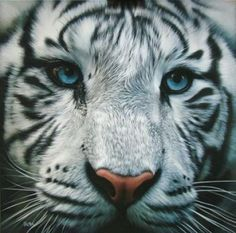 Hyperréalisme animalier : « Aigue marine » - Christophe Drochon. #animaux #fichepedaarto