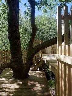 Detalles de la terraza de Cabana de Amalia Jacuzzi, Cabana, Garden Bridge, Outdoor Structures, Plants, Wood Cabins, Cozy, Fire Places, Decks