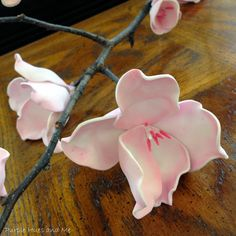 Cherry Blossom Foam Flowers - DIY