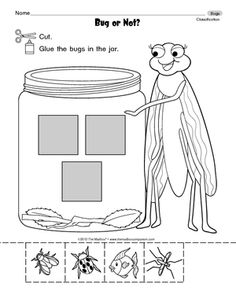 insect or not an insect freebie sort april kindergarten units insects bugs insects. Black Bedroom Furniture Sets. Home Design Ideas