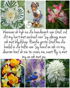 Evening Greetings, Afrikaanse Quotes, Goeie More, Good Morning Wishes, Bible Scriptures, Life Lessons, Life Tips, Beautiful Words, Feelings