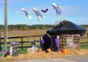 Pigs, cows, spiders and pumpkins were made out of the bales. Prizes were awarded to the top five displays: