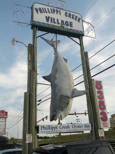 Phillippi Creek Village Restaurant & Oyster Bar in Sarasota, FL