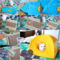Image via: instructables Do you have a kitty and you want to purchase a tent for it? If yes then change your mind as you can create a wonderful cat tent wi