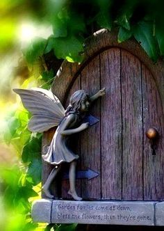 Garden fairies come at dawn, bless the flowers, then they are gone...