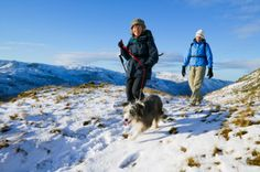 Retiring in Alaska? Start thinking about how you're going to spend your time! Many people take up seasonal jobs at tourist spots to spend their golden years; or you can go hiking or camping in many of the beautiful landscapes. Winter Hiking, Go Hiking, Winter Camping, Family Camping, Survival Shelter, Survival Gear, Survival Skills, Survival Prepping, Running Training Plan