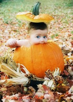 Great Fall photo. I took this of my son when he was 6 months old.