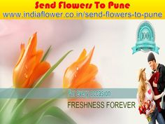Pune online florist is the world best online florist in india. I think Pune online florist gives you better function in any occasions. You can send flowers to Pune to your lover and relatives. Send Flowers, Fresh Flowers, Beautiful Flowers, 24 7 Delivery, Online Florist, Cake Online, Valentine Day Special, Gift Cake, Flower Delivery