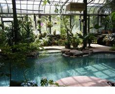 - Pool in a greenhouse that would solve all my problems! Well vi … – -Account suspended - Pool in a greenhouse that would solve all my problems! Well vi … – - Entrance into Lagoon Pool Best Greenhouse, Indoor Greenhouse, Greenhouse Plans, Greenhouse House, Homemade Greenhouse, Large Greenhouse, Greenhouse Wedding, Greenhouse Gardening, Greenhouse Gases