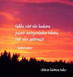 Erilaisen mummin uusi elämä. Naurua, kyyneliä, kuvia, runoja. Poem Quotes, Poems, Life Quotes, Carpe Diem Quotes, Different Quotes, Hug Me, Happy Moments, Powerful Words, Grief