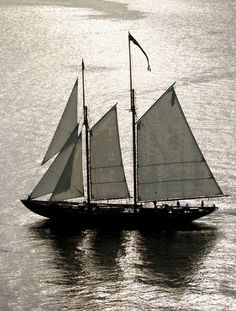 """Pilot schooner """"Virginia"""""""