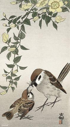 Birds and plants Japanese Bird, Japanese Prints, Vintage Japanese, Ohara Koson, Lotus Plant, Bird Illustration, Botanical Illustration, Japanese Painting, Chinese Painting