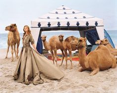 Exclusive first look: The Ralph Lauren Collection Spring 2015 campaign, shot by Bruce Weber, evokes exotic luxury