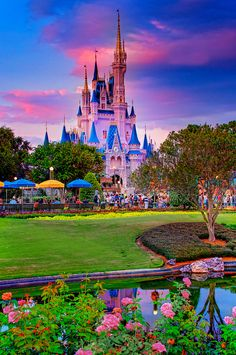 "I will always love you Disney World and Disneyland.' Disney World - ""Magic Hour Magic Kingdom"" Walt Disney World, Disney Parks, Disney Fun, Disney Magic, Disney World Castle, Disney Word, Disney Vacations, Disney Trips, Dream Vacations"
