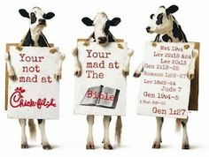My Blog: To My Gay Friends & Chick-Fil-A-Loving Christians