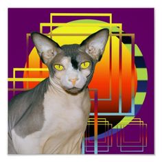 Poster | Sphynx Cat Ninja by Sunset purple