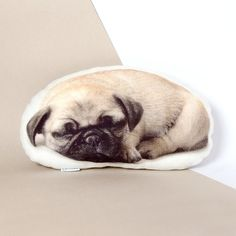 This pug is so cute that you will love him! How fun is this puppy pillow for a…