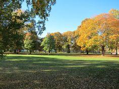 Karlstad parken