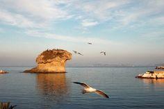 """""""Fungo d'Ischia"""" della turistapercaso Criss1986 #buongiorno #twitpic #tuttialmare"""