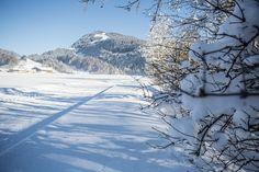 Im Winter bietet der Bregenzerwald Abwechslung für einen ganz besonderen Urlaub im Schnee: Genussurlauber, Skifahrer und Snowboarder, Langläufer sowie Schneeschuh- und Winterwanderer werden begeistert sein. Wonderland, Mountains, Nature, Travel, Skiers, Snowshoe, Winter Vacations, Viajes, Naturaleza
