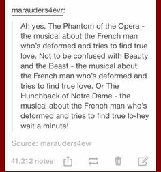 The Phantom of the Opera, Beauty and the Beast, The Hunchback of Notre Dame - musicals about the French man who's deformed and tries to find true love