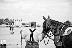 Sarasota Polo Club Pet Photographer, Polo Club, Manatee, Humane Society, Places To Go, Florida, Horses, World, Pets
