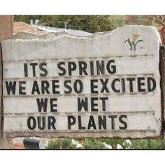 Spring. So excited we wet our plants.