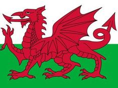 """I got: """"You needed Did you pass?"""" out of ) - Could you pass a WELSH citizenship test? Uk History, Tudor History, Saint David's Day, Red Dragon, Citizenship, Welsh, Christian, St David, Happy"""