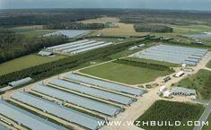 Hebei Weizhengheng Modular House Technology Co. Poultry Farming, Home Technology, Farm Animals, Farm House, Golf Courses, Shed, House Design, Building, Horse Farms