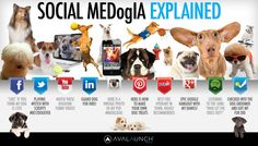 Social MeDogIA Explained  Infographic - Social Media explained via Dogs. Very effective at highlighting how each channel is used.