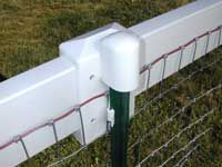 Horse fencing - Equi-Tee is safer pasture fencing. T-post fence and vinyl fence. Pasture Fencing, Horse Fencing, Farm Fence, Backyard Fences, No Climb Horse Fence, Fence Gates, Rustic Fence, Pallet Fence, Farm Yard
